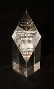 Ayd Instone Business Wealth Club Sunmakers Marketeer of the Year Award 2010 creative marketing